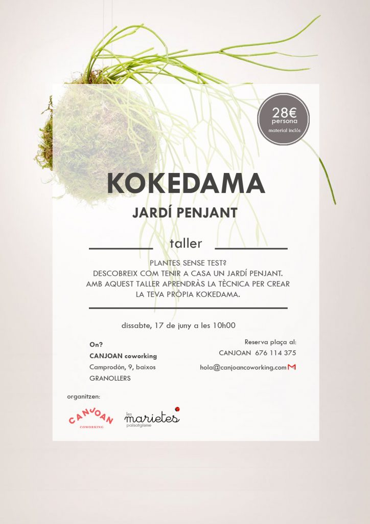 TALLER KOKEDAMAS GRANOLLERS CANJOAN COWORKING